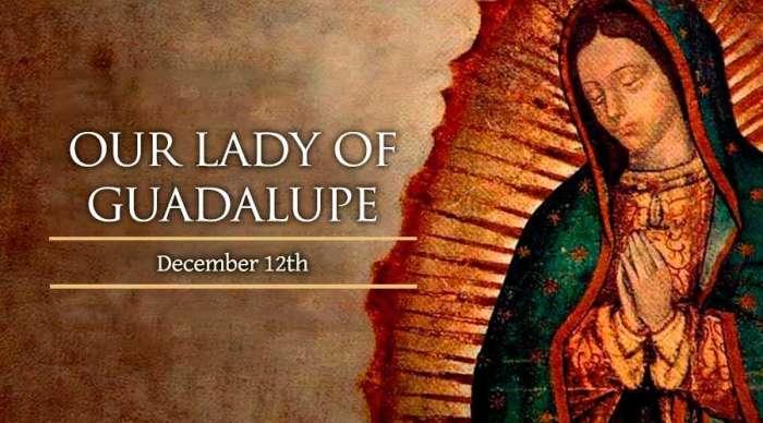 guadalupe_12december